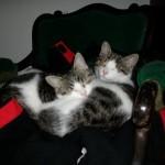 Hugo und Uschi