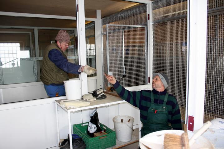 Umbau Hundehalle (4)