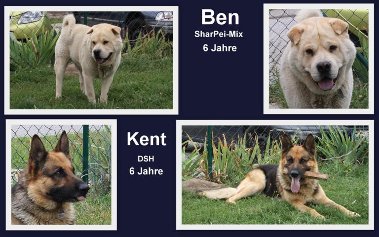 Ben und Kent